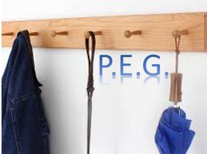 PEG.jpg
